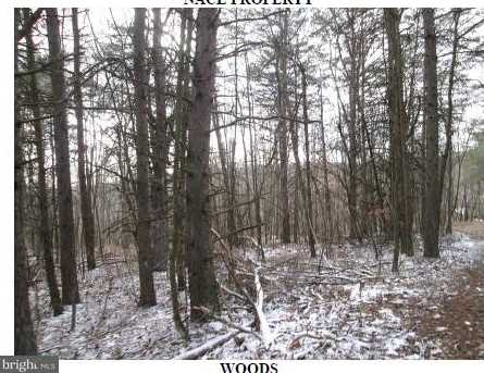 17305 Hares Valley Rd - Photo 17