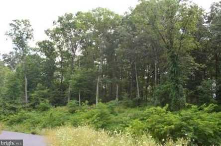 65 Mockingbird Drive - Photo 5