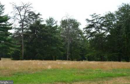 65 Mockingbird Drive - Photo 3