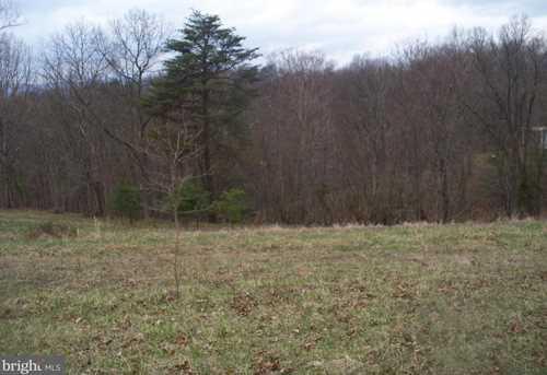 11415 Oak Tree Ridge Rd - Photo 3