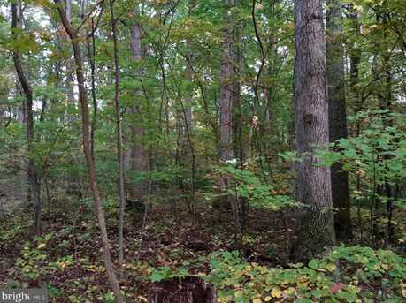0 Witch Hazel Trail - Photo 5