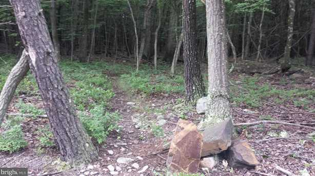 319 South Branch Mountain Rd - Photo 9