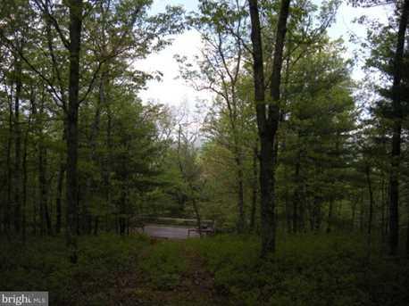 Bear Garden Trail - Photo 5