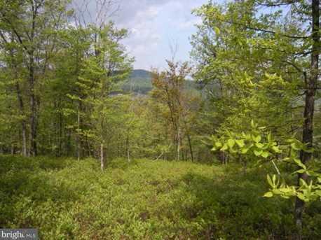 Bear Garden Trail - Photo 7