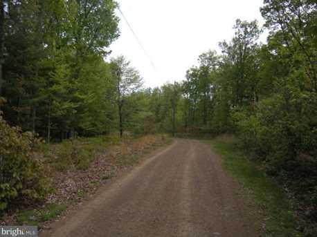 Bear Garden Trail - Photo 3