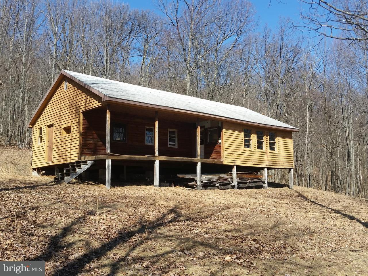 Homes For Rent In Great Cacapon Wv