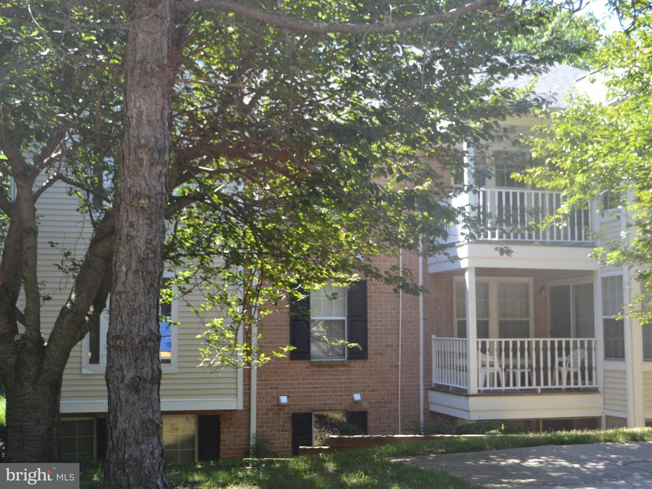 Homes In Arnold Md For Rent
