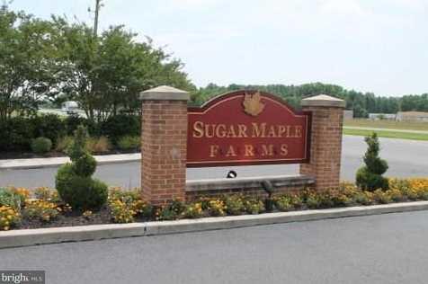 7731 Sugar Maple Way - Photo 25