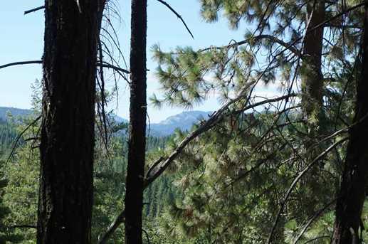 2480 Sugar Pine Trail - Photo 1
