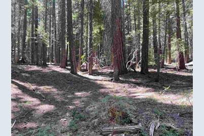 1660 Lodgepole Trail - Photo 1